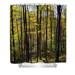 Forest Shower Curtain by Lanjee Chee