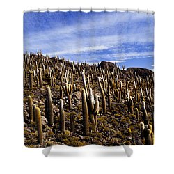 Forest Of Cacti Shower Curtain by Lana Enderle