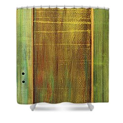 Forest Painted Door Shower Curtain by Asha Carolyn Young