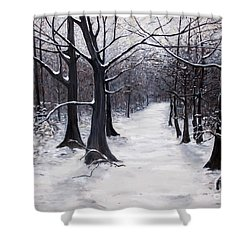 Forest Path In Winter Shower Curtain