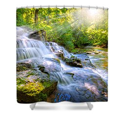 Forest Stream And Waterfall Shower Curtain
