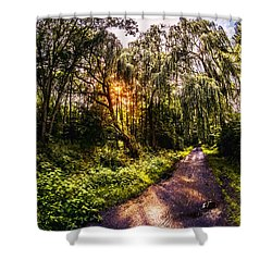 Forest Track Shower Curtain