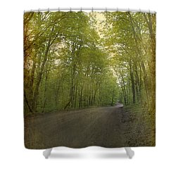 Forest Tranquility... Shower Curtain by Nina Stavlund