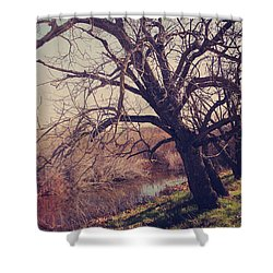 Forever In My Heart Shower Curtain by Laurie Search