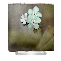 Forget Me Not 03 - S07bt07 Shower Curtain by Variance Collections