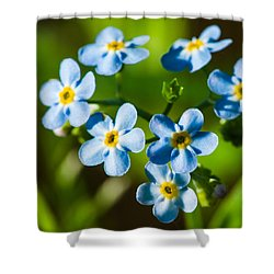 Forget You Never - Featured 3 Shower Curtain by Alexander Senin