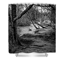 Forgotten Path Shower Curtain by Charlie Duncan