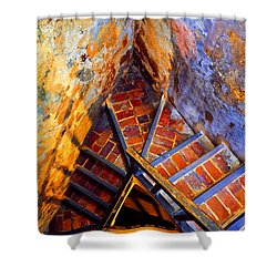 Fortress Steps Shower Curtain by Stephen Anderson
