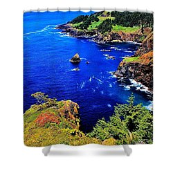 Foulweather Shower Curtain by Benjamin Yeager