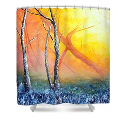 Found Shower Curtain by Meaghan Troup
