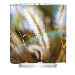 Fountain Grass Shower Curtain