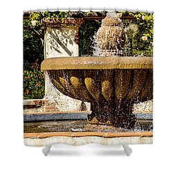 Shower Curtain featuring the photograph Fountain Of Beauty by Peggy Hughes