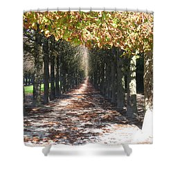 Fountainebleau - Under The Trees Shower Curtain by HEVi FineArt