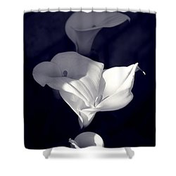 Four Calla Lilies In Shade Shower Curtain