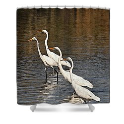 Four Egrets Fishing Shower Curtain by Tom Janca