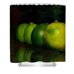 Four Limes Shower Curtain