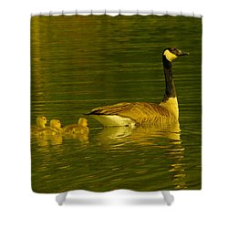 Four Little Miracles Shower Curtain by Jeff Swan