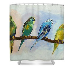Four Parakeets Shower Curtain by Michael Creese