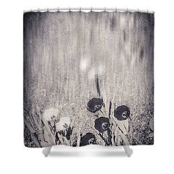 Four Red Tulips And Two Yellow Ones Shower Curtain by Silvia Ganora
