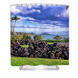 Four Seasons 112 Shower Curtain