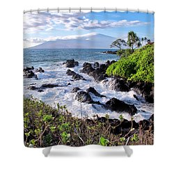 Four Seasons 117 Shower Curtain