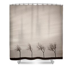 Four Trees Shower Curtain by Dave Bowman