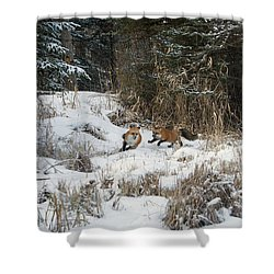 Fox Hollow Shower Curtain