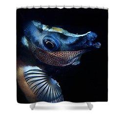 Foxface Rabbitfish Shower Curtain
