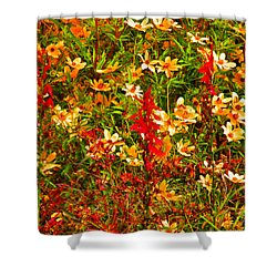 Foxfire 1 Shower Curtain by Nick Kirby