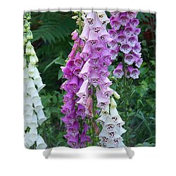 Foxglove After The Rains Shower Curtain by Eunice Miller