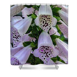Foxglove At Waters Edge Shower Curtain