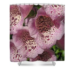 Shower Curtain featuring the photograph Speckled by Cheryl Hoyle