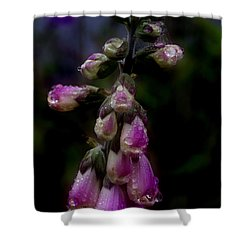 Foxglove In The Rain Shower Curtain by Adria Trail