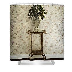 Foyer Living Shower Curtain by Margie Hurwich