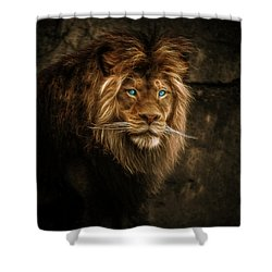 Fractallion Shower Curtain