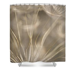 Fragile Shower Curtain by Anne Gilbert
