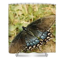 Fragile Beauty Shower Curtain