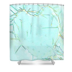 Shower Curtain featuring the photograph Fragile Heart by Roselynne Broussard