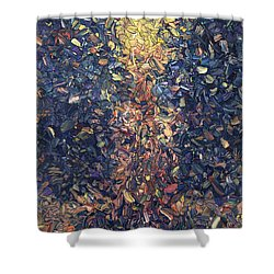 Shower Curtain featuring the painting Fragmented Flame by James W Johnson
