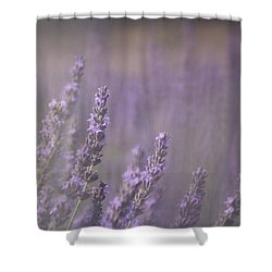 Fragrance Shower Curtain by Lynn Sprowl