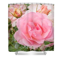 Fragrant Cloud Rose Shower Curtain by Jane McIlroy