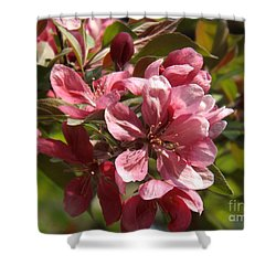 Fragrant Crab Apple Blossoms Shower Curtain