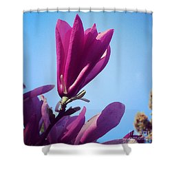 Shower Curtain featuring the photograph Fragrant Silence by Kerri Farley