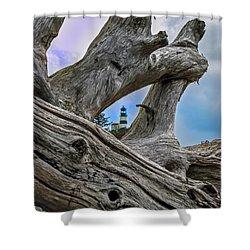 Framed Lighthouse Shower Curtain by Robert Bales