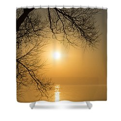 Framing The Golden Sun Shower Curtain by Georgia Mizuleva