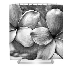 Shower Curtain featuring the photograph Frangipani In Black And White by Peggy Hughes
