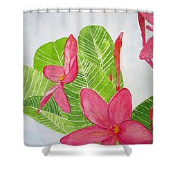 Frangipani Tree Shower Curtain