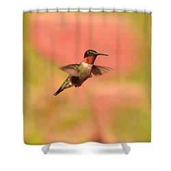Free As A Bird Shower Curtain by Lori Tambakis