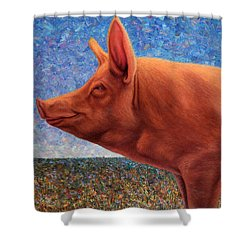 Free Range Pig Shower Curtain by James W Johnson
