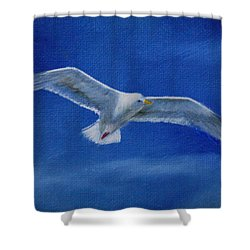 Shower Curtain featuring the painting Free Spirit 2 by Lynn Hughes
